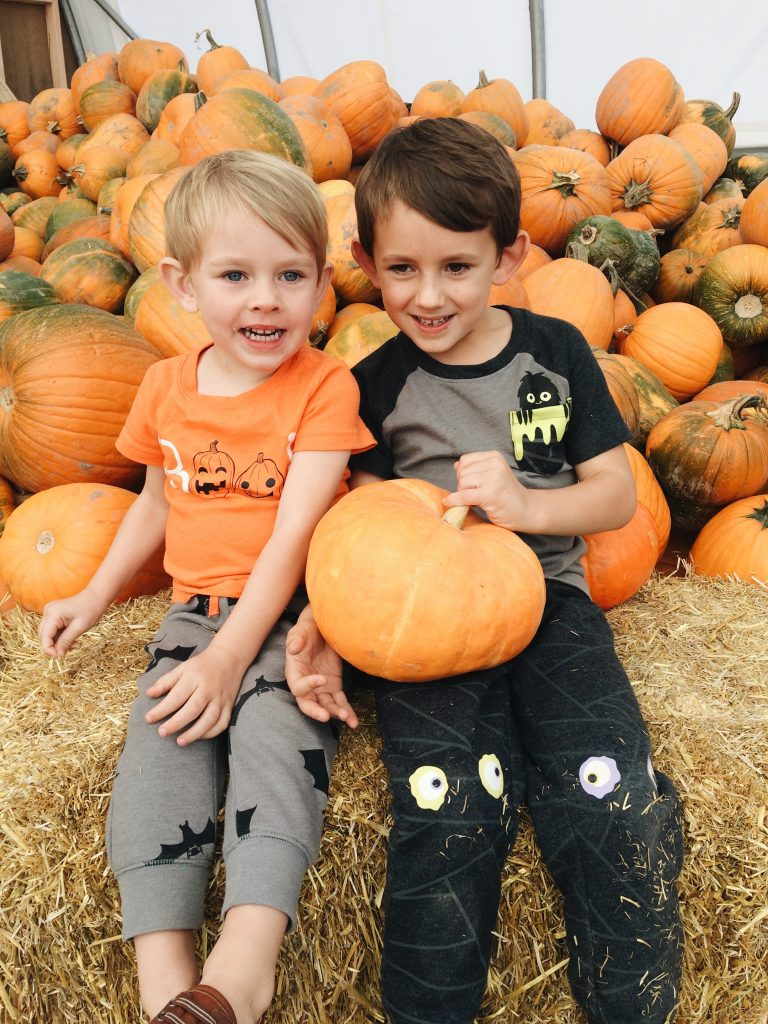 pumpkin patch birthday party